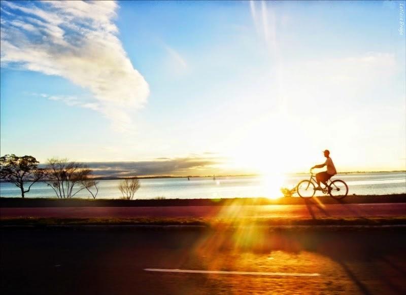 Bicicleta Como Transporte Diário: Possibilidade ou Loucura?