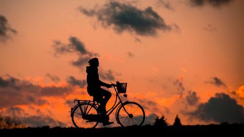 Bicicleta: Uma Ótima Opção