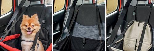 Carros e Pets, o que você precisa para transportar seu bichinho?
